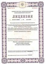 Кольцово лицензия